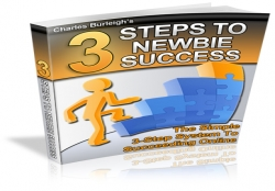 3 Steps To Newbie Success In Online Business
